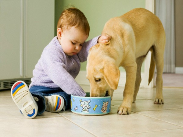 Mãe, bebê e pet: como estabelecer uma relação saudável em casa?